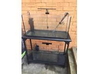 Fish tanks and metal stand