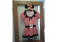 Minnie mouse fancy dress . Size 6-8.