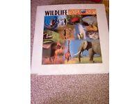Wildlife explorer magazines