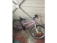 Girls bicycle like new.