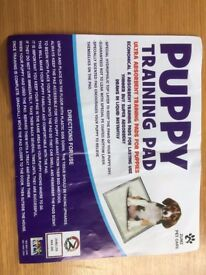 Puppy Pads - Box of 100