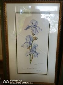 Signed paintings by Elizabeth cameron
