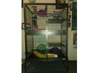 Cage - rat , ferret ,chinchilla ,etc .