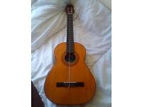 Classico Spanish Guitar