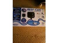 Live reef cam