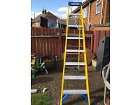 Werner step ladder 3 weeks old