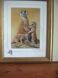 "STEPHEN GAYFORD ""GOOD MOTHER "" MEERKATS LIMITED EDITION SIGNED FRAMED PRINT"