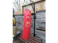 Turner Sports Punch bag