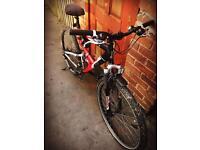 Bike (mountain bike)