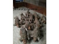 JOB LOT OF 10 FAB HANDCARVED FAIR TRADE LARGE PIGS – SUITABLE FOR THE GARDEN OR INDOORS