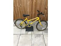 Girls Raleigh spicee mountain bike for sale!