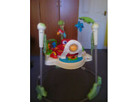GREAT FUN! Fisher Price Rainforrest Jumperoo