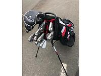 Titelist golf bag
