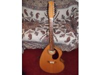Giannini Craviola, Brazilian 12 String Guitar & gig-bag