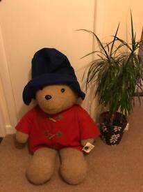 Paddington Bear Teddy: 1 metre - £20 ovno