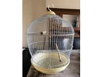 Large round birdcage