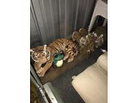 Tiger & Cubs Garden Ornaments
