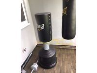Everlast Free-standing Adjustable Height Punchbag (left hand of picture)