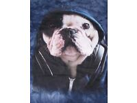 T-shirt designer dog in a hoody!