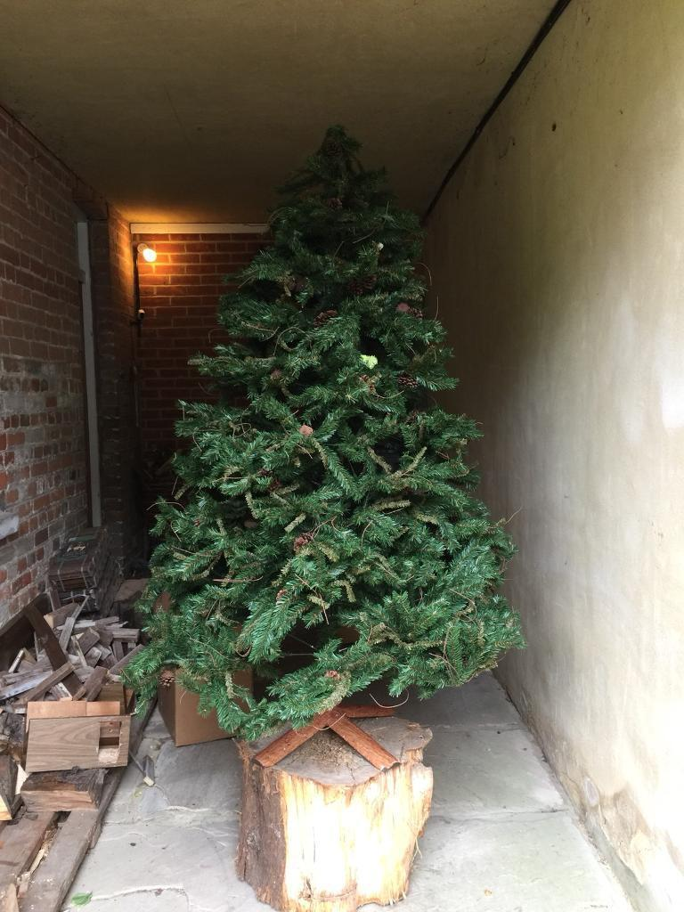 Authentic pine Christmas tree