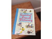 USBORNE FRENCH DICTIONARY