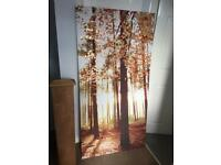 Large tree canvas from next