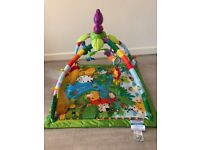 Fisher Price Rainforest Deluxe baby gym mat