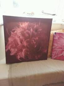Flower canvases