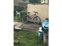 Womens Bicycle - Used but good condition