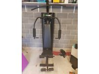 Home gym / multi gym / exercise equipment / weight training