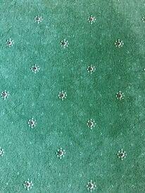 FREE ULSTER carpet