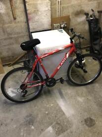 Men's mountain bike