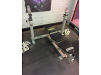 Powertec strength chest bench