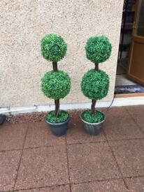 2 x Indoor/outdoor fibre optic trees