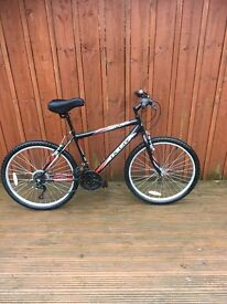 MENS RALEIGH MOUNTAIN BIKE