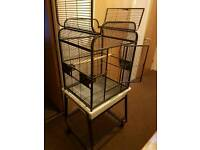 Brand new large parrot/Bird Cage lovely metallic black colour
