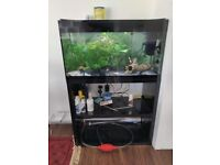 Tropical fish tank, stand, fish, pump, heater and light