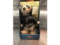 Vassily meerkat