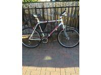 Bikes for quick sale