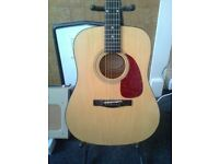 Squier 20th Anniversary Acoustic guitar