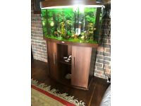 Juwel Vision 180 Tank And Stand