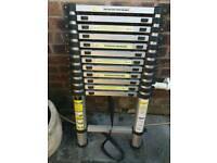Adjustable anodised aluminium ladder