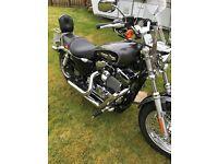 Harley Davidson sportster XL 1200cc 2014 ready to go