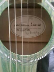 Earthfire acoustic guitar in green