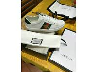 Gucci Ace Trainers All Size's