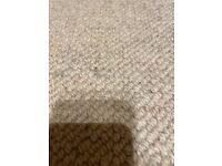 Donegal high quality loop pile carpet