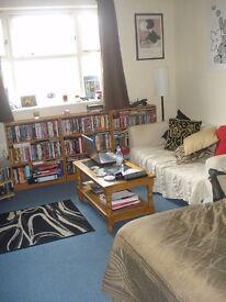 Amazing studio flat located in the furzedown area, SW17 !