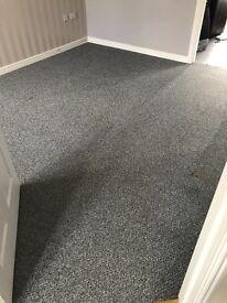 Light grey carpet - lovely condition