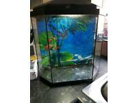 Fish tank with light and pump