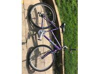 "Raleigh Vixen ladies 26"" bicycle"